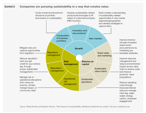 companies-persuing-sustainability